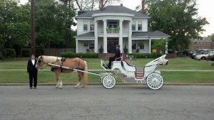 hawkinsville-wedding-07