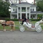 hawkinsville-wedding-07